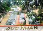 duc nhan building office for lease for rent in phu nhuan ho chi minh