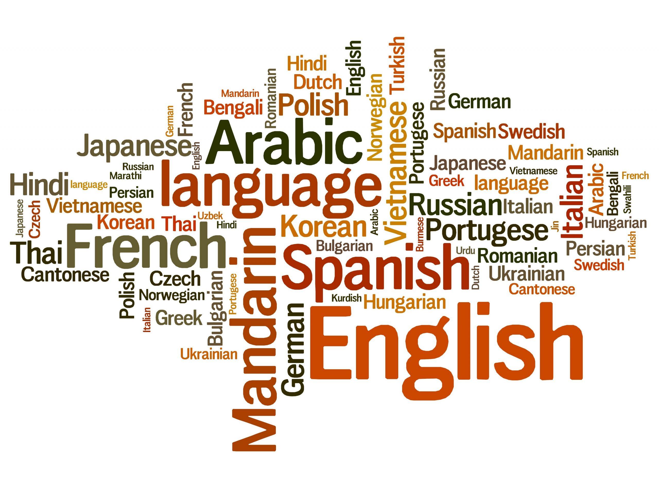1. Language