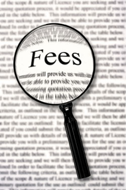 What services do the management fees (service fees) include?
