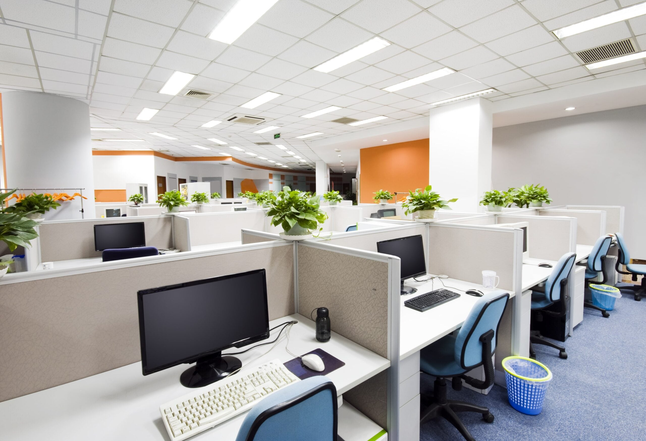 Why choose an area of 50m2 to arrange your office
